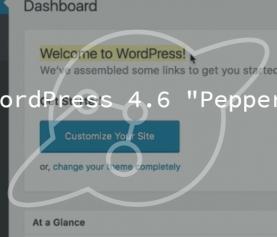 """WordPress 4.6 """"Pepper"""" Release"""
